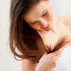 髪の基礎知識 ヘアケア講座