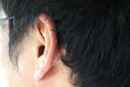 くせ毛の原因