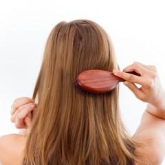 美髪を作るヘアブラシの効果