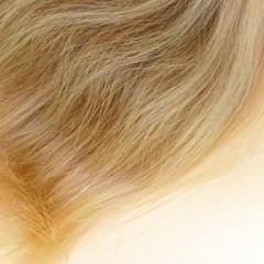 ブリーチしても傷みにくい髪の特徴