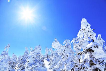 髪も日焼けをする!冬でも雪焼けに注意!!