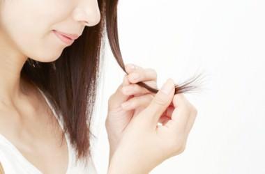 なぜ、髪の毛は毎日抜けるの?