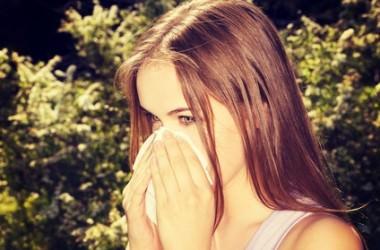 花粉症と頭皮のかゆみの関係 ヘアケア講座 頭皮ケア(スカルプケア)