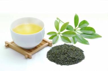 お茶に含まれる「カテキン」が髪に効果あり!