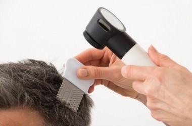 健康な人は毛穴から二、三本髪の毛が生えている!