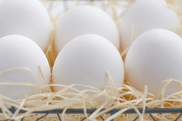 薄毛・抜け毛・白髪解消に卵の薄皮ローション
