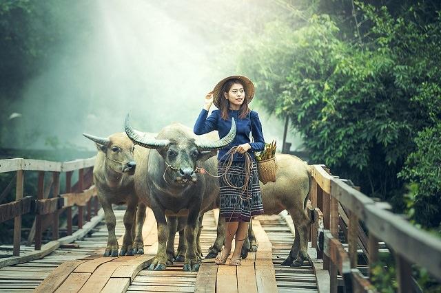 タイ人女性はなぜ美髪の人が多いの?