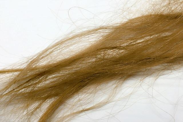 髪の毛 パサパサ 男