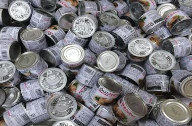 鯖缶を食べることで育毛対策が出来るの?