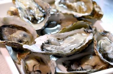 牡蠣を食べて薄毛対策