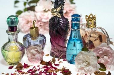 香水とヘアコロン、どっちも付けたら臭い? ヘアケア講座 頭皮ケア(スカルプケア)