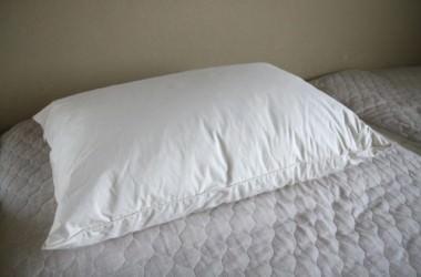 枕の汚れが頭皮のかゆみの原因かも! ヘアケア講座 頭皮ケア(スカルプケア)