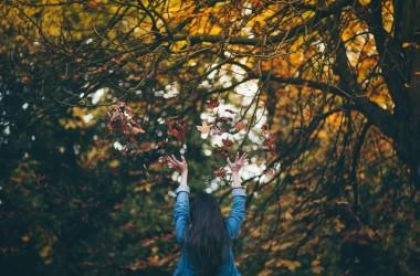秋に起こりやすい頭皮トラブルとは ヘアケア講座