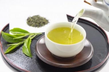 薄毛予防には緑茶が効果的?