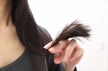 毛先『だけ』チョロチョロうねり髪。原因と対策。 ヘアケア講座