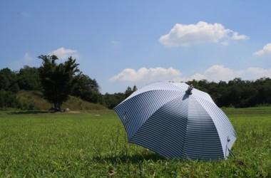 男性でも日傘は必要?日傘による髪への効果