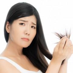 キクイモで女性の薄毛対策