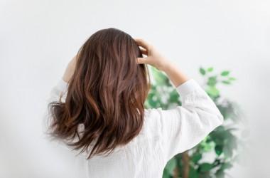 簡単な自宅頭皮ケアについて ヘアケア講座