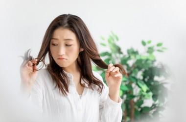 縮毛矯正から卒業!!髪質改善でくせ毛が治る?! ヘアケア講座