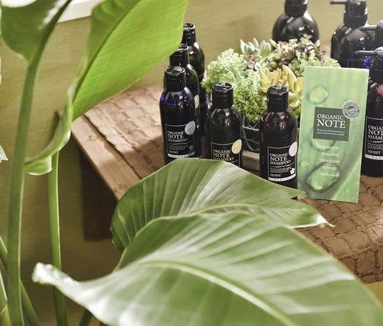 Verde Hair Garden(ベルデヘアガーデン)